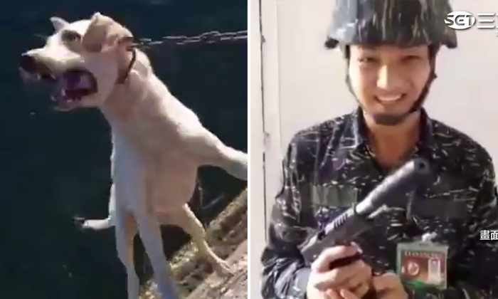 Taiwan soldiers torture and kill puppy on base