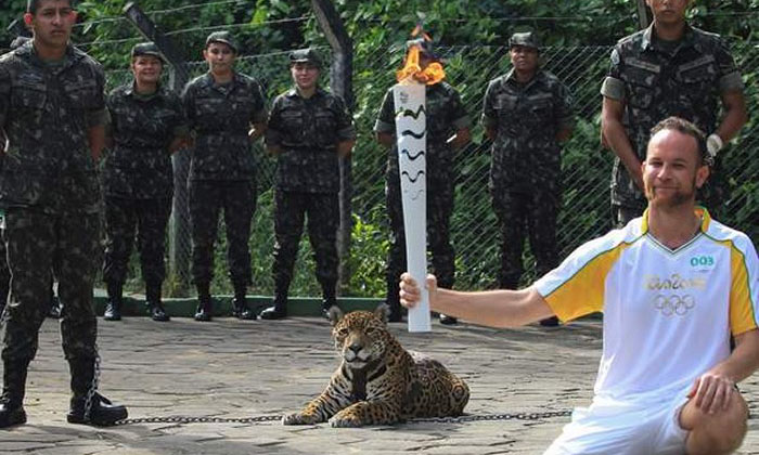 'Mascot' jaguar shot dead shortly after being paraded at Olympic torch ceremony in Brazil