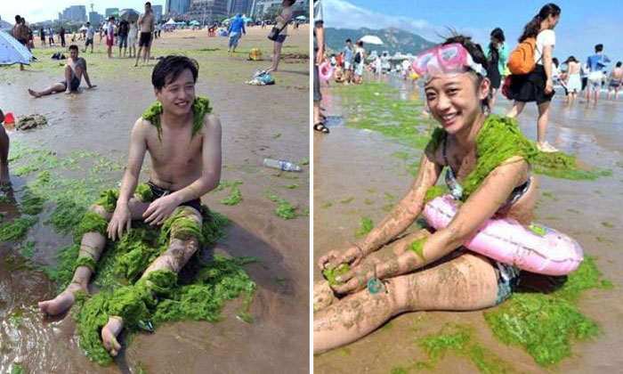 Covering their bodies with algae has become a thing for beachgoers in China