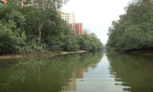 Man drowns at Pasir Ris Park, body recovered by SCDF