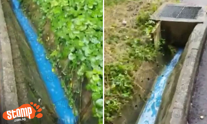 Anyone knows what this mysterious-looking blue liquid flowing through drain in Orchard is?