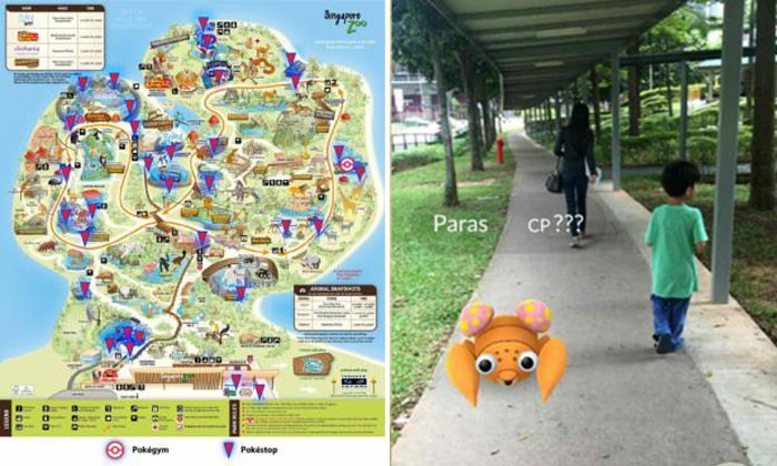 Still trying to catch em' all? WRS releases maps of Pokemon Go locations at zoo, safari and bird park