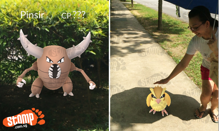 Stomp Team and Stompers try out Pokemon Go -- and none of us can stop