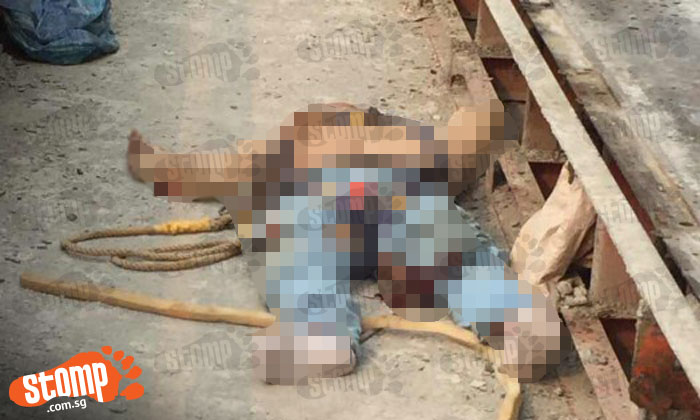 Building Falling Over : Year old worker from china dies after falling over edge