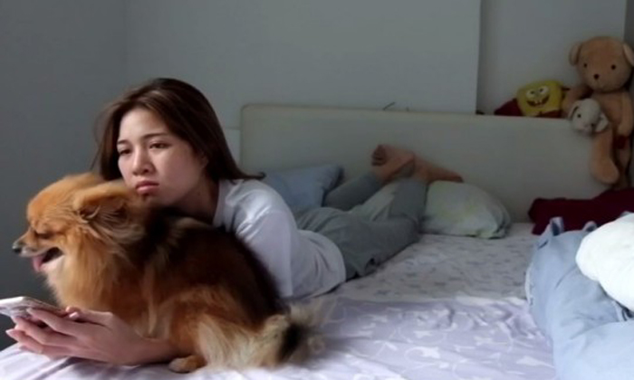 Needy dog just insists on having cuddles with owner