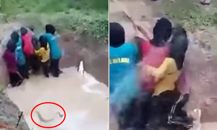Video of girls getting thrown into snake pits during school camps in Malaysia will make you want to hug your kids close
