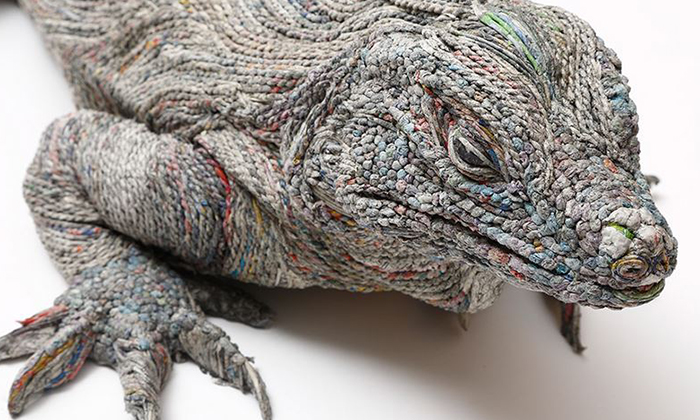 This lizard's appearance may be weird, until you take a closer look