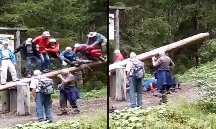 Watch these 14 elderly go on a see-saw and try not to laugh