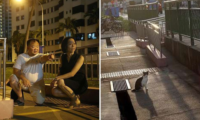 Photos by The Straits Times (Don Wong)