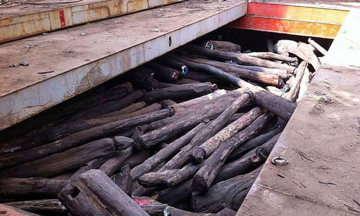The rosewood logs seized in March 2014 were worth $70 million. The logs were imported by Singaporean Wong Wee Keong and his firm Kong Hoo from Madagascar without a permit. PHOTO: AVA