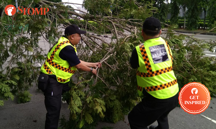 Several Certis Cisco officers were spotted helping to clear branches from a tree that had fallen on the Pan Island Expressway(PIE) on Dec 16.