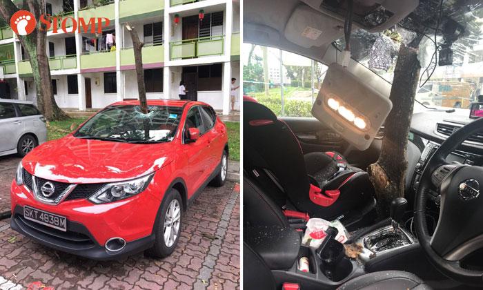A branch pierces a car's windscreen at Jalan Bukit Ho Swee.