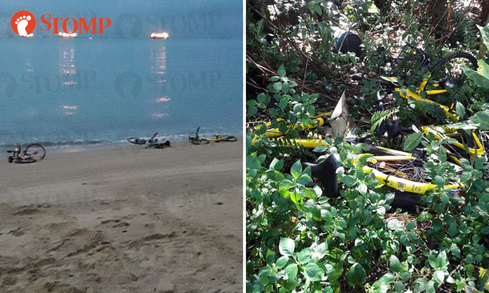 Shared bicycles found on a beach (left) while ofo bicycles were found in a forest near Yishun Avenue 1. (right)