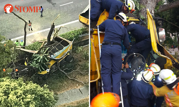 A lorry driver was trapped after hitting a tree along the ECP this morning (left). SCDF's DART officers rescued him using hydraulic rescue tools (right). PHOTOS: STOMP, SCDF