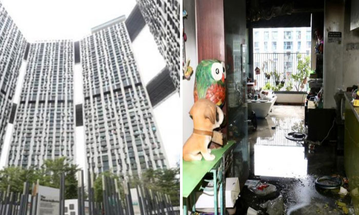 The fire broke out in a 48th-floor unit (right) at the Pinnacle@Duxton (left). PHOTO: LIANHE WANBAO