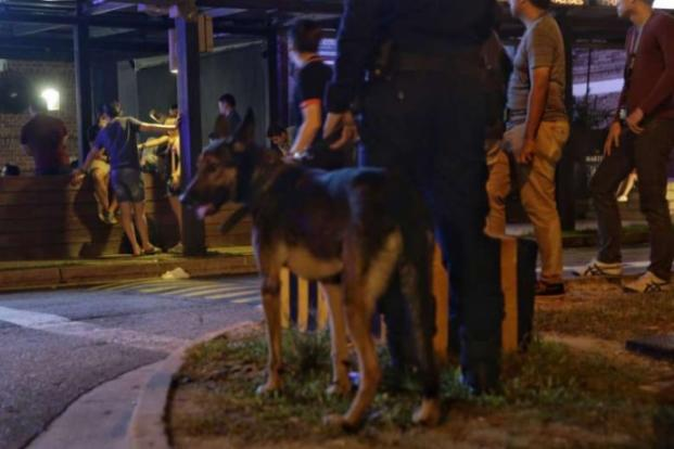A Special Operations Command officer with a dog stands by as the police check a club in the wee hours of Saturday (March 18). ST PHOTO: KEVIN LIM