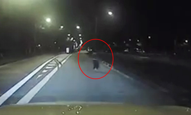 Woman running across road, look how close you came to being run over at Jalan Ahmad Ibrahim