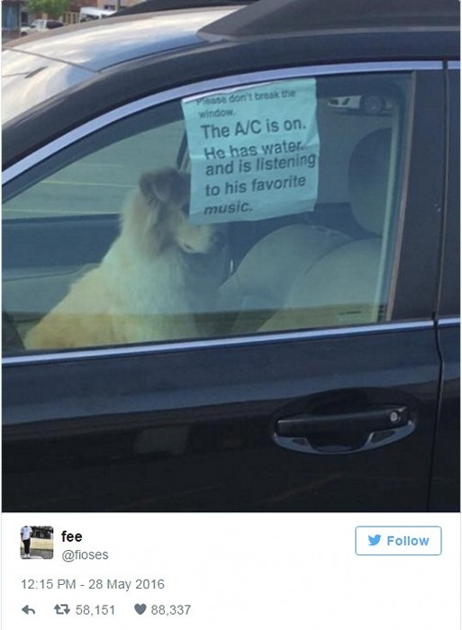 Owner leaves dog in car with note asking not to break the window -- and the Internet responds