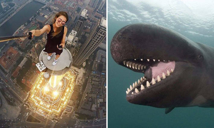 Fascinating photos that will brighten your day immediately