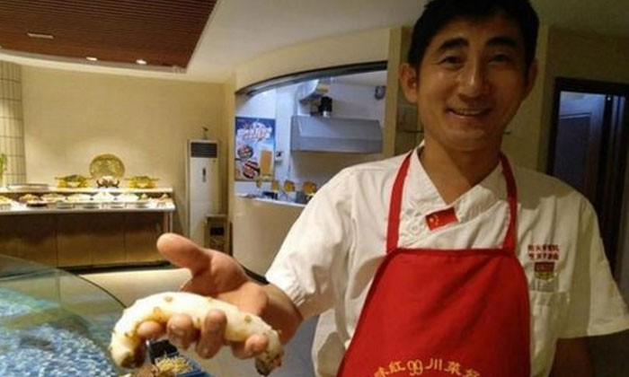 White sea cucumber discovered by Qingdao restaurant owner