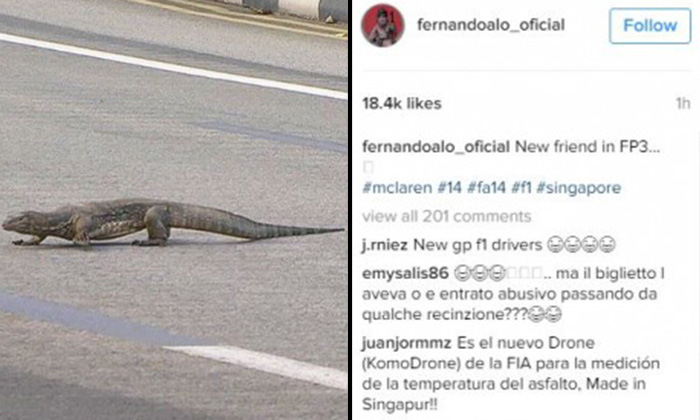 F1 driver startled by large monitor lizard on race track in S'pore