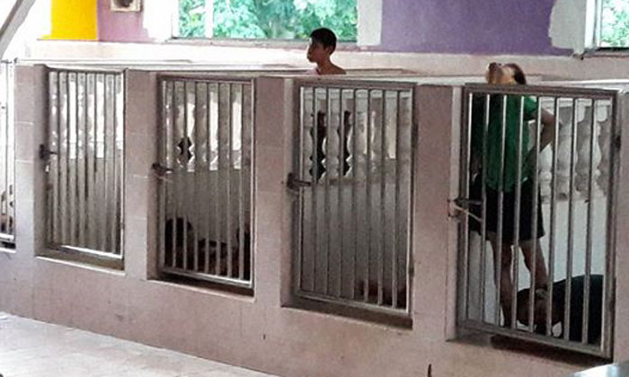 Malaysian woman exposes welfare home for locking up disabled children in 'cages' -- but chairman says it's 'for their own safety'