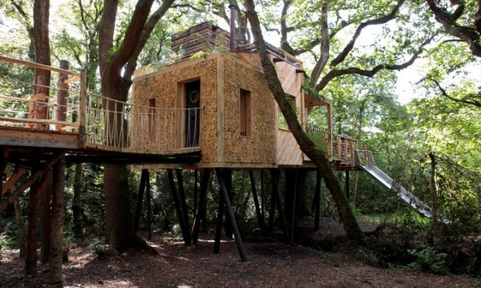 This treehouse looks impressive from the outside -- but wait till you see its inside