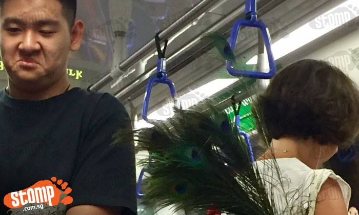 'Excuse me, miss? Your peacock feathers are tickling me': Commuter trying to avoid getting tickled in train
