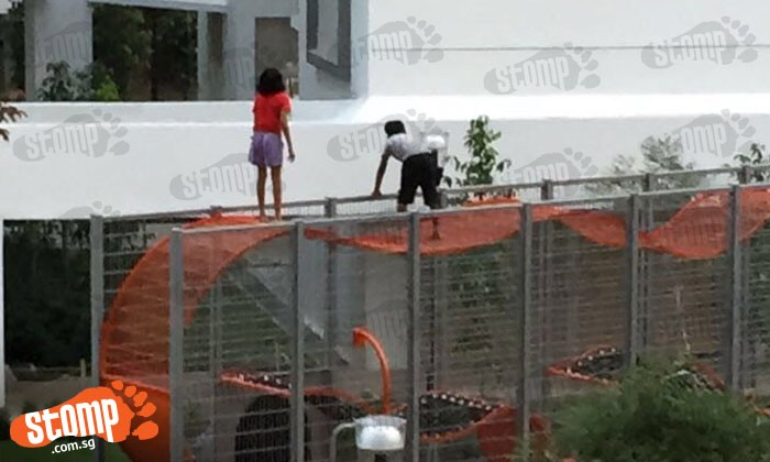 How in the world did they get up there? Children seen jumping on 2-storey-high fencing around playground at Kallang area