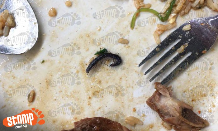 """Nails, worms and insects: Look at the """"extra ingredients"""" students find at SUTD food stall"""