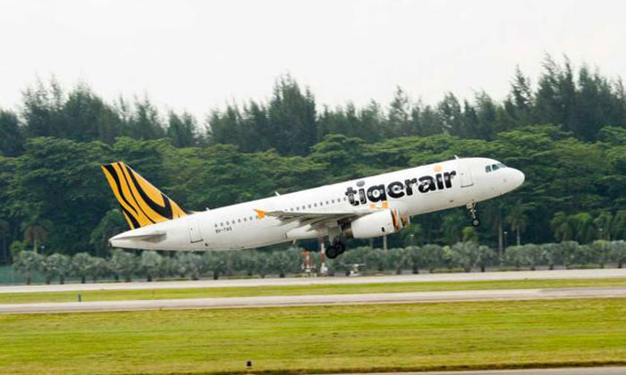 Tigerair flight from Hong Kong to S'pore turns back after bird flys right into plane's windscreen and cracks it