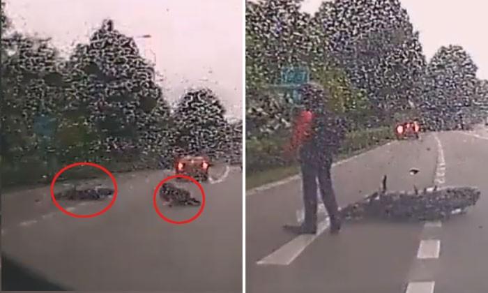 Driver makes abrupt lane change and sends motorcyclist flying at Mandai Road