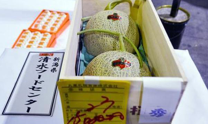 Real Yubari melons with a price of 1.5 million yen (S$19,000) are displayed at the Sapporo Central Wholesale Market in this file photo taken May 22, 2015. Photo: AFP
