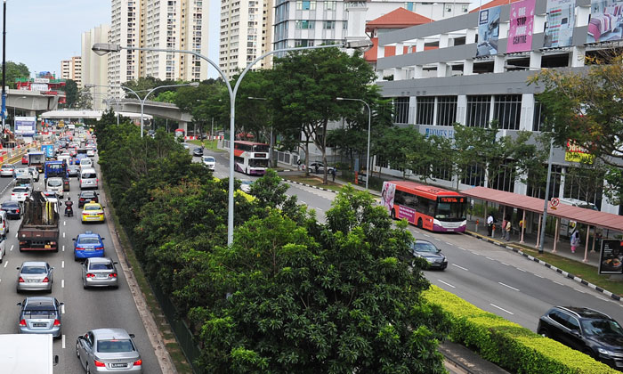 Braddell Road. Photo: ST