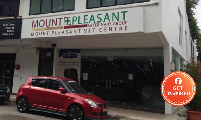 Photo: Mount Pleasant Veterinary Centre
