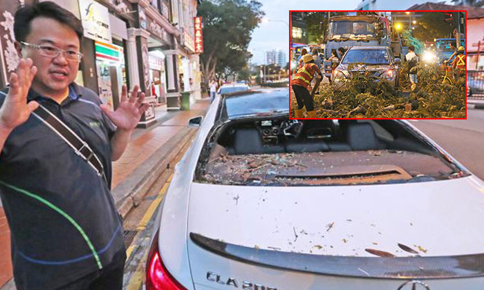 Mr Lin De Jie (main) describing his experience after the tree fell (tile). Photo: Shin Min Daily News