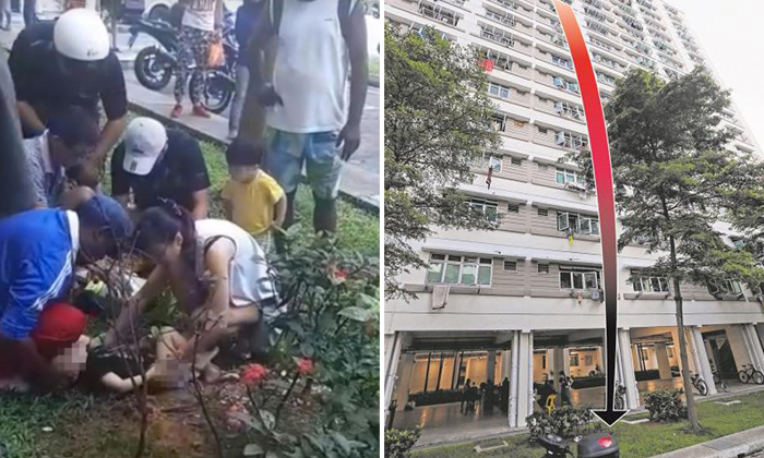 Photos: Lianhe Wanbao, Shin Min Daily News, Facebook screengrabs
