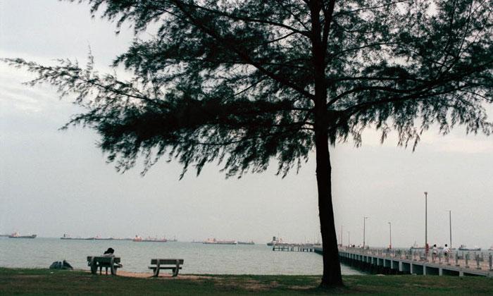 BedokJettyat East Coast Park. ST PHOTO:DESMOND FOO