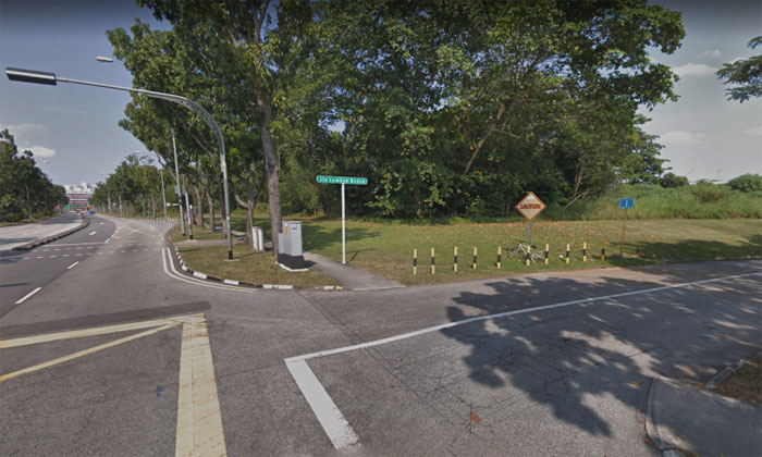 The victim was molested by a man on an electronic scooter along Bedok Reservoir Road off Jalan Lembah Bedok. PHOTO: SCREENGRAB FROM GOOGLE MAPS