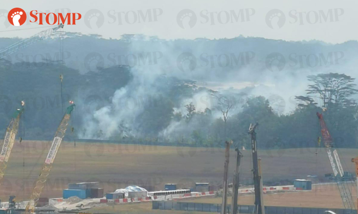 2 vegetation fires on Sunday, with one being the size of 10