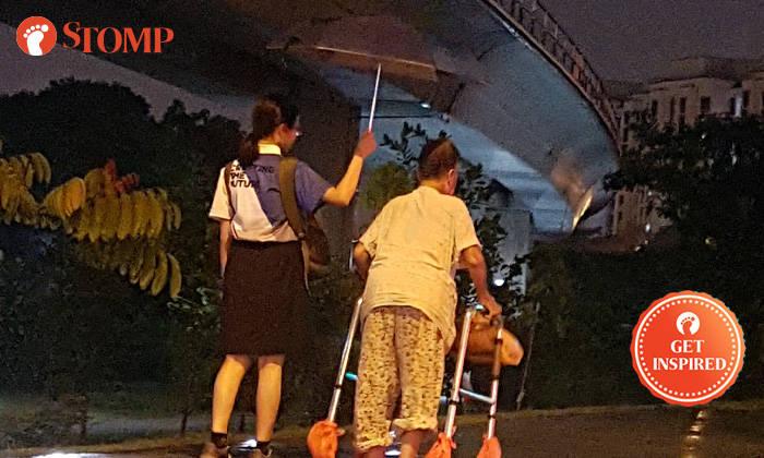 Schoolgirl Uses Umbrella To Shelter Elderly Woman From -5047