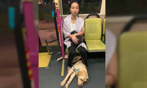 """Disabled commuter's FB post about woman telling her guide dog """"cannot go up bus"""" goes viral"""