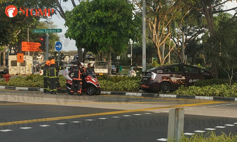 Cabby taken to hospital after crashing taxi into bushes outside Gardens by the Bay